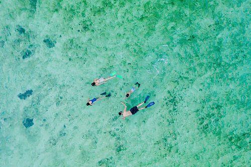 Snorkeling in Vita Levu - Intercontinental Fiji - Fiji Islands - Fiji Island Resorts