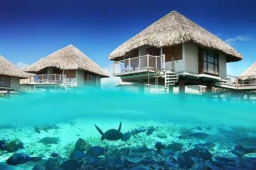 Bora Bora Overwater Bungalow - Honeymoon Vacation in Tahiti