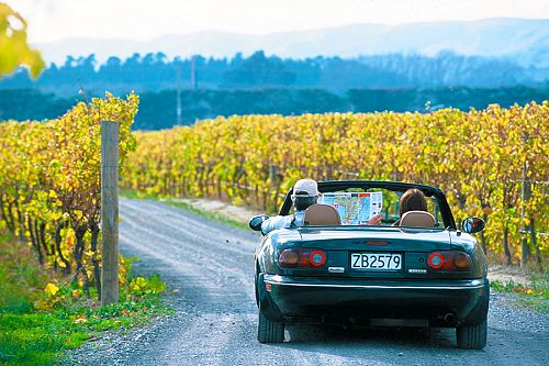 Self Driving the New Zealand Wine Trail - Book Your Trip to New Zealand - New Zealand Travel Agency