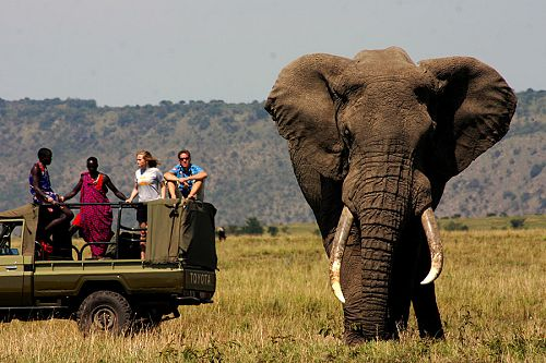 Africa Vacation Packages - Africa Vacation - Africa - Travel Specialists - handcrafted