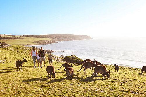 Family on Kangaroo Island Australia - Best Multigenerational Family Vacations