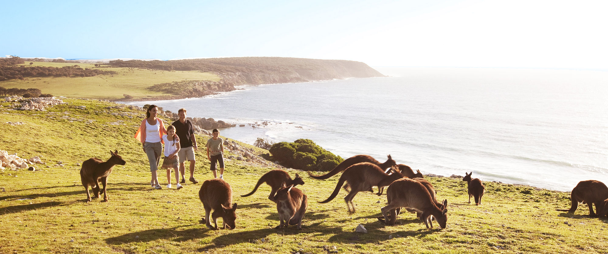 Escorted Tour Australia And New Zealand