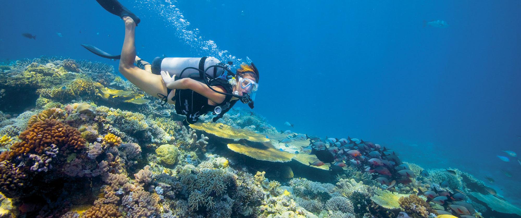 Australia Trip Packages - Great Barrier Reef - Lizard Island Luxury Resort