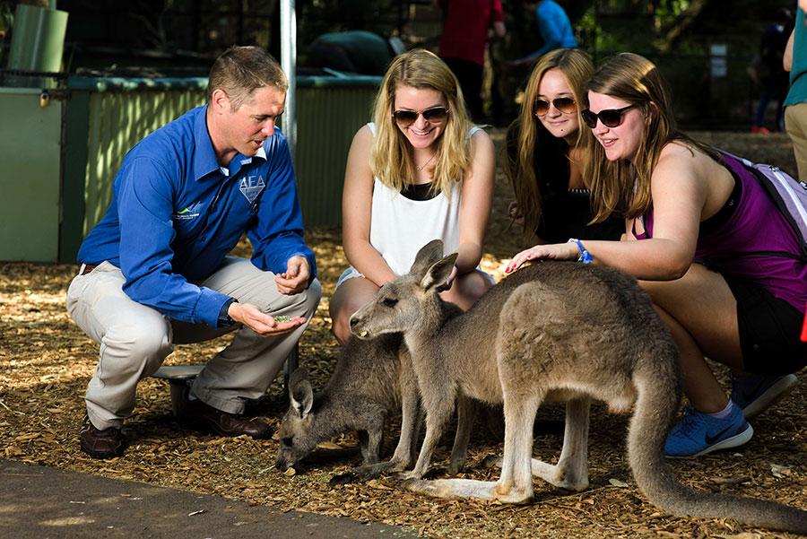 Australia Vacations Sydney - AEA Luxury Tours