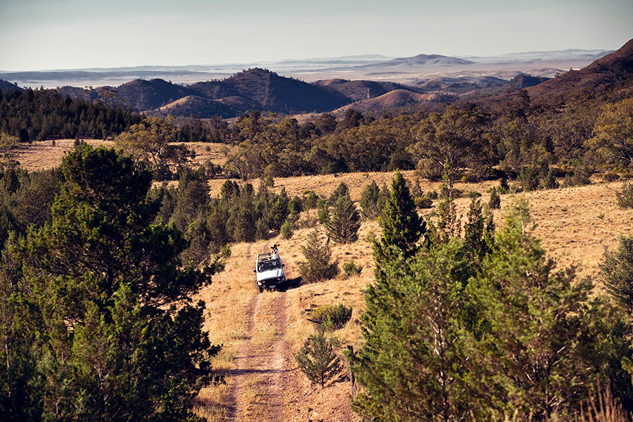 Australia Wildlife Vacations - Arkaba Station