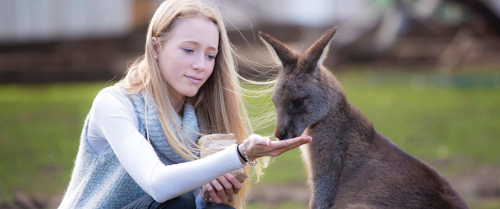 Australia Wildlife Vacations - Bonorong Wildlife Sanctuary Tasmania