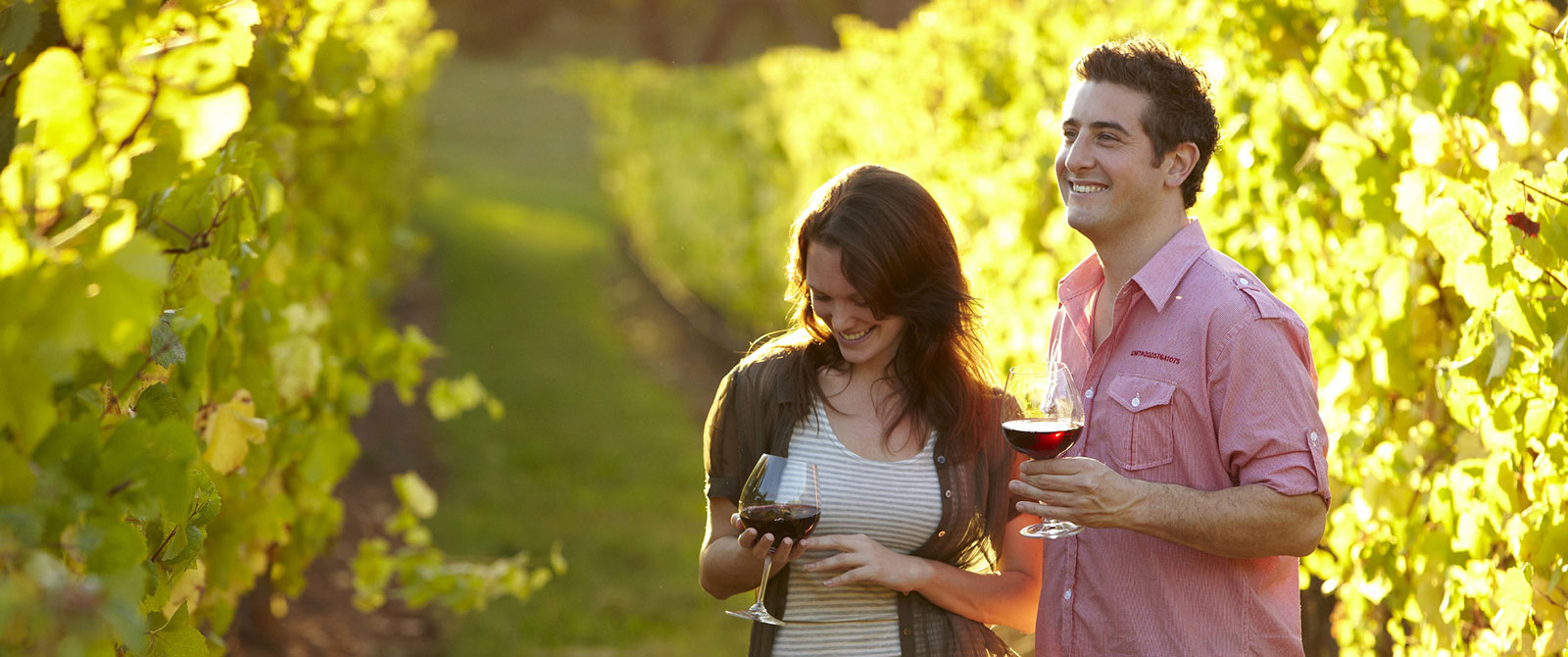 Wine Tasting in Mornington Peninsula - Melbourne Australia Luxury Vacations