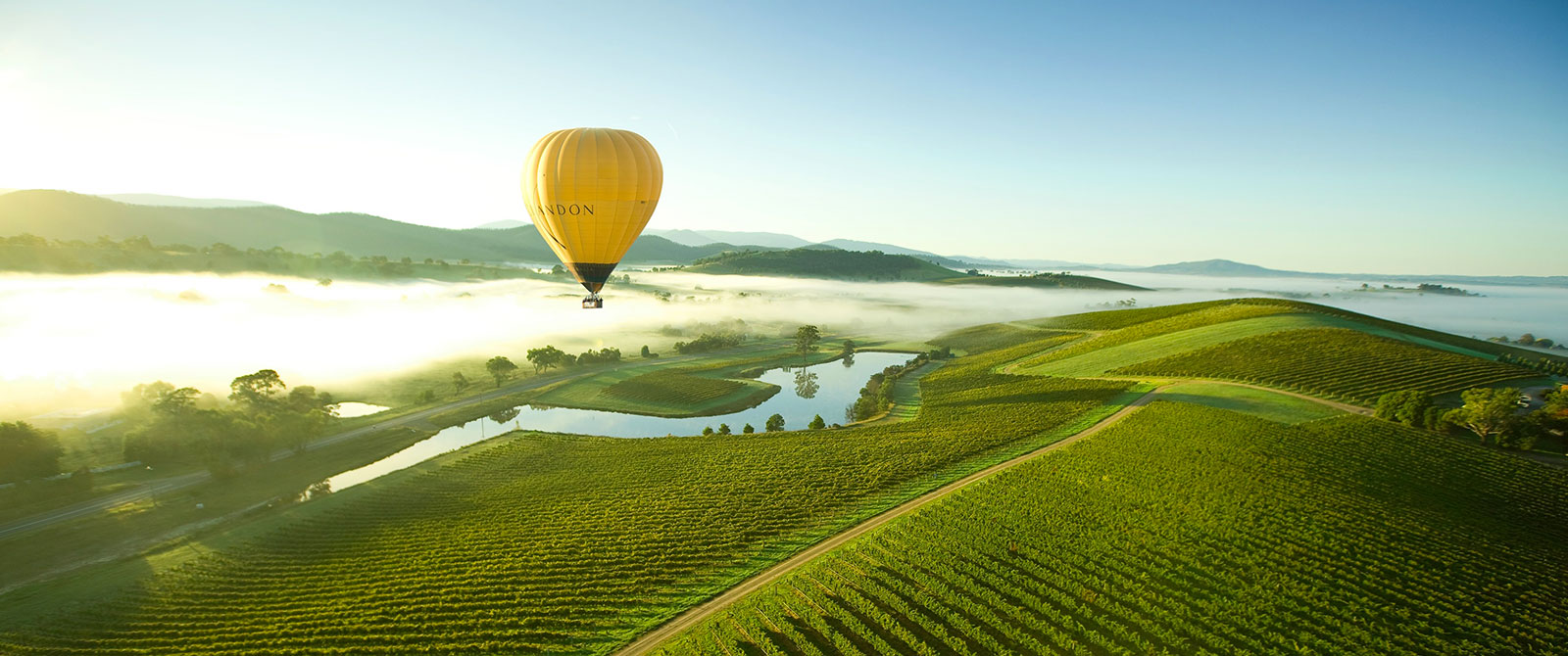 Hot Air Balloon Over Yarra Valley Wine Region