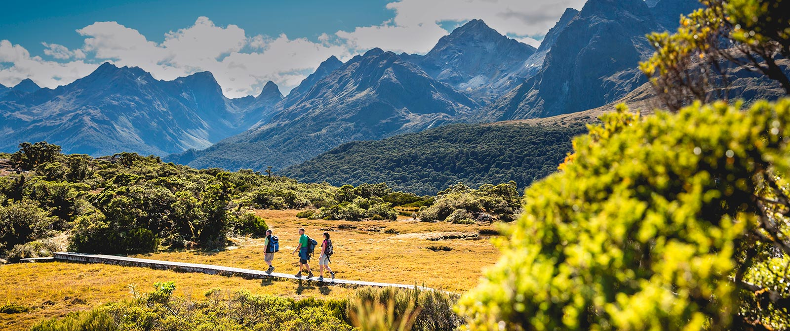 Luxury New Zealand Travel Agency